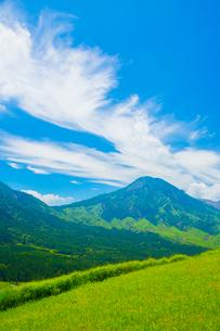箱石峠より阿蘇の根子岳の写真素材 [FYI02668543]