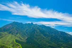 箱石峠より阿蘇の根子岳の写真素材 [FYI02668565]