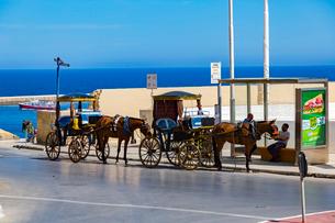 マルタ島,観光馬車の写真素材 [FYI02668702]