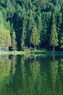 新緑の龍王ケ淵 リフレクションの写真素材 [FYI02668917]