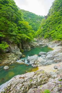 新緑の長門峡の写真素材 [FYI02669150]