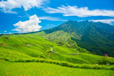 箱石峠より阿蘇の根子岳の写真素材 [FYI02669214]