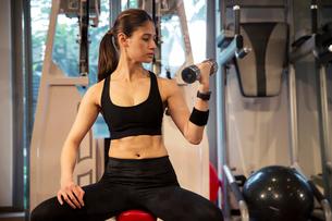 ダンベルを持ちトレーニングをする20代女性の写真素材 [FYI02669233]