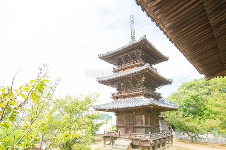 牛窓の本蓮寺の写真素材 [FYI02669257]