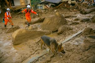 土砂災害の風景の写真素材 [FYI02669376]