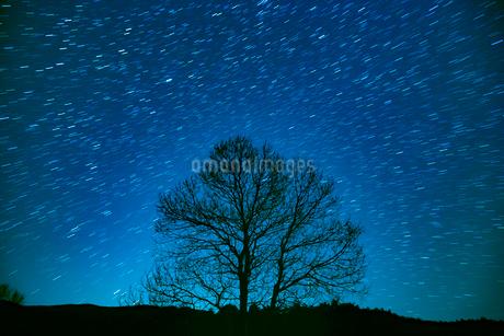 満天の星の写真素材 [FYI02669419]