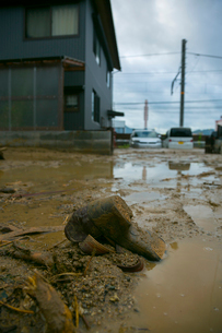 土砂災害の風景の写真素材 [FYI02669485]