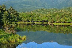 知床一湖の写真素材 [FYI02669516]