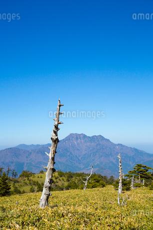 瓶ヶ森と石鎚山の写真素材 [FYI02669591]