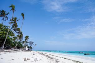 タンザニア ザンジバル島のヌングイビーチの写真素材 [FYI02669633]