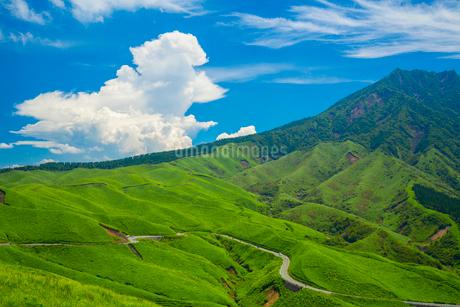 箱石峠より阿蘇の根子岳の写真素材 [FYI02669671]