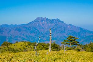 瓶ヶ森と石鎚山の写真素材 [FYI02669681]