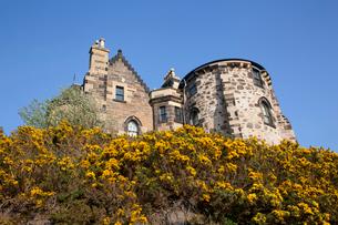 カールトン・ヒルの旧天文台と黄色い花の写真素材 [FYI02669711]