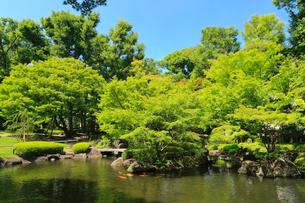 大田黒公園の写真素材 [FYI02669725]