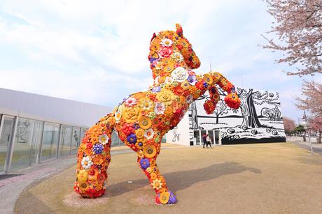 十和田市現代美術館の写真素材 [FYI02669778]