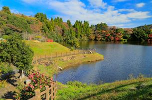 秋の亀山湖の写真素材 [FYI02669986]