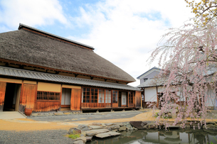 旧樋口家住宅の写真素材 [FYI02670016]