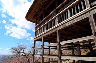 筑波山梅林の展望台の写真素材 [FYI02670078]