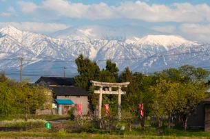 刀尾神社と立山連峰の写真素材 [FYI02670252]