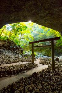 天岩戸神社の仰慕ケ窟の写真素材 [FYI02670720]