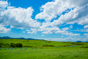 阿蘇の草原の写真素材 [FYI02670757]