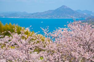 春のしまなみ海道の写真素材 [FYI02670761]