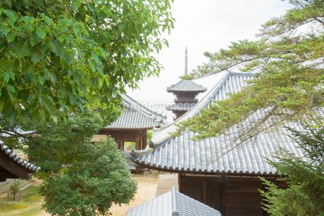牛窓の本蓮寺の写真素材 [FYI02670832]