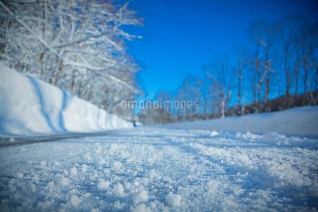 雪道の路面の写真素材 [FYI02670847]