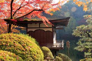 西之丸庭園 紅葉渓庭園の紅葉の写真素材 [FYI02671032]