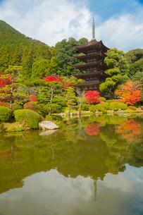 瑠璃光寺の五重塔の写真素材 [FYI02671218]