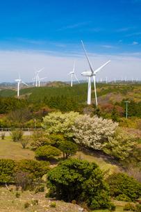 青山高原の風力発電施設の写真素材 [FYI02671305]