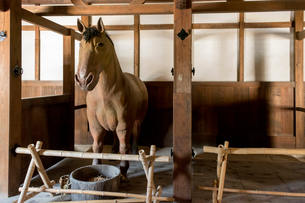 彦根城 馬屋内部と模型の馬の写真素材 [FYI02671329]