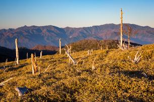 大台ヶ原より大峰山脈を望むの写真素材 [FYI02671345]