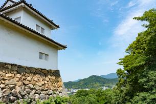 彦根城より望む佐和山の写真素材 [FYI02671532]