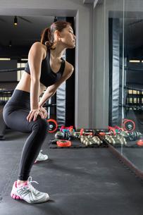 ジムでトレーニングをする女性の写真素材 [FYI02671535]