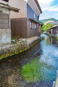 中山道醒井宿 地蔵川と民家とバイカモの写真素材 [FYI02671632]