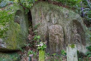 藪の中三尊磨崖仏の写真素材 [FYI02671665]