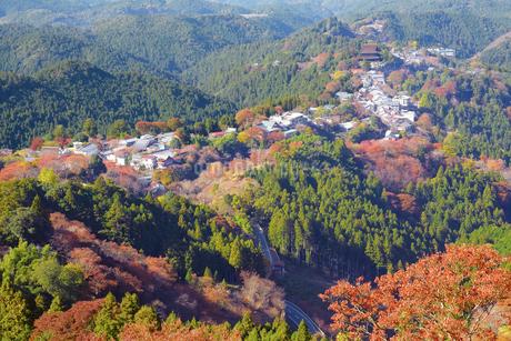 花矢倉から望む紅葉の吉野山と車道の写真素材 [FYI02671753]