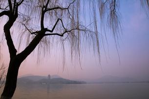 西湖と雷峰塔(中国浙江省杭州)の写真素材 [FYI02671761]