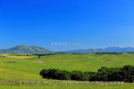 北海道根釧台地の牧場風景の写真素材 [FYI02671827]