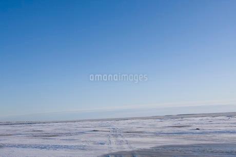 一面氷に覆われた大地の写真素材 [FYI02671833]