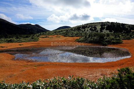 10月 秋の田茂萢湿原の写真素材 [FYI02671835]