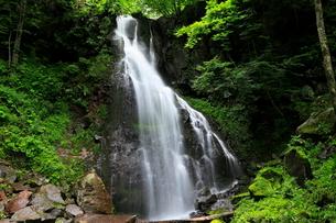 7月 八岳(やたけ)の滝 夏の八ヶ岳の写真素材 [FYI02671848]