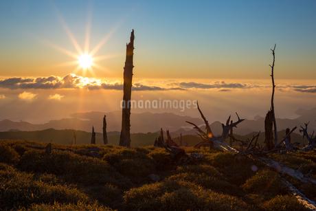 大台ヶ原の朝日の写真素材 [FYI02671860]