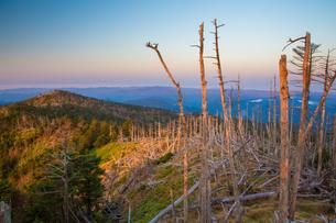 朝焼けの八経ケ岳頂上付近と明星ケ岳に続く稜線の写真素材 [FYI02671941]