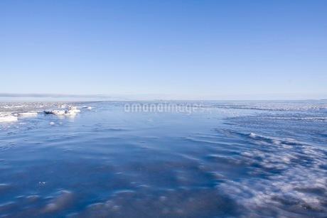 シャーベット状に凍った海の写真素材 [FYI02671968]