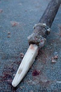 狩猟の槍の写真素材 [FYI02671987]