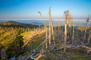 八経ヶ岳頂上付近と明星ケ岳に続く稜線の写真素材 [FYI02672013]