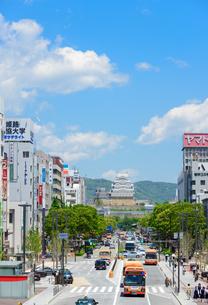 姫路城と大手前通りの景観の写真素材 [FYI02672031]