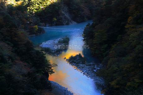 11月 夢の吊橋 紅葉の寸又峡の写真素材 [FYI02672050]